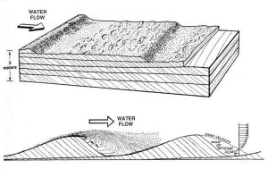 Diagrams illustrating the formation of cross beds on a sandy bed in response to sustained water flow